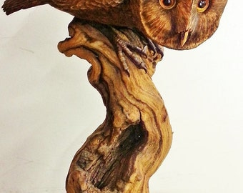 "Barn Owl Wood Carving ""Spying"""