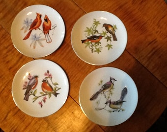 Chadwick Miller hanging plates with four birds