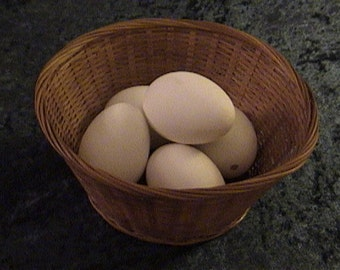 5 count of white duck eggs. Blown & cleaned inside and out with bleach and soap. Measures all the way around the egg 6-1/4 inch to 7 inch.