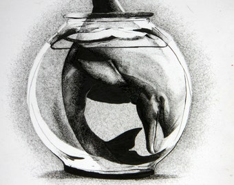 Dolphin in a Fishbowl