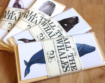 Set of 7 Whale Cards- oversized cards with whale species illustrations