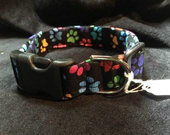 Multicolor paw collar