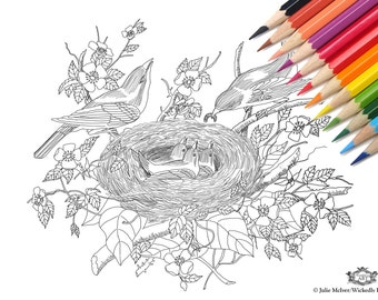 Nest, Birds, nest, birds and nest  DIY Print at home  Digital Download Colouring Page, Adult Coloring, Nesting birds,nature.