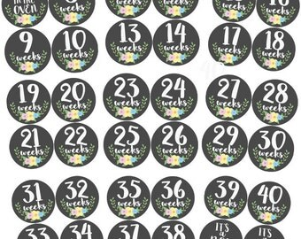 Pregnancy Stickers, Maternity Stickers, Week by Week, Belly Stickers, Belly Bump Sticker, Weekly Pregnancy Stickers, Pregnancy Milestone