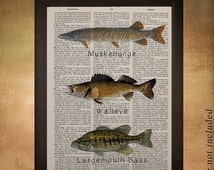Sale - Ships Oct 8 - Freshwater Fishing Dictionary Art Print, Fish Muskellunge Muskie Walleye Bass Fishing Man Cave Wall Art da1206
