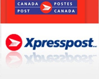 USA express shipping, united states upgrade shipping.