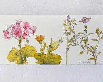 "Prints ("" Winter flowers"")"