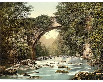 The Dargle Bridge. County Wicklow, Ireland] 1890. Vintage photo postcard reprint 8x10-up. Ireland County Wicklow