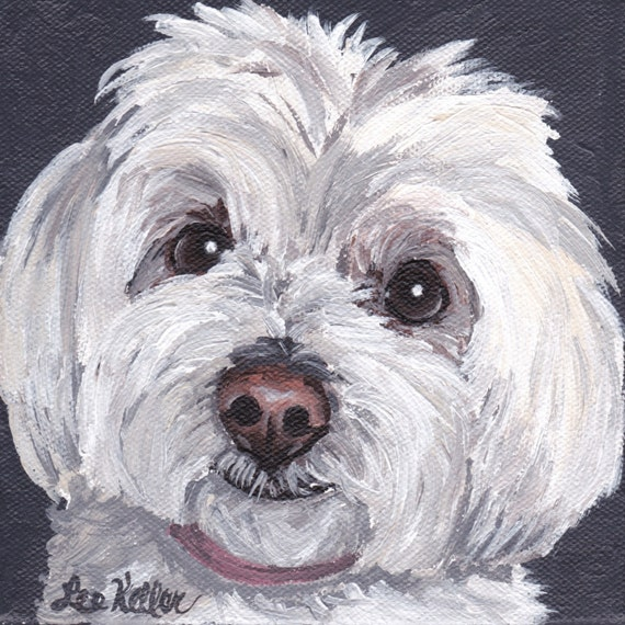 maltese painting maltese dog art print from original painting maltese art on 4104