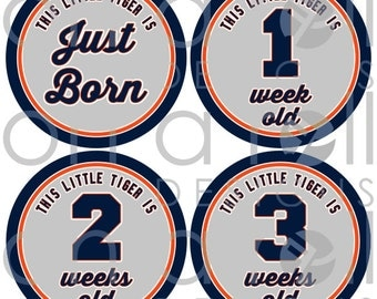 Who's Your Tiger Baby Milestone Stickers (Just Born-1 Year Old) - Instant Digital Download