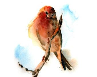 Birdie Watercolor Print, Bird Watercolor Painting, Wall art, bird Art