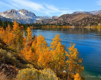 California Fall Landscape, Sierra Nevada Waterscape, June Lake Photo, Autumn Art, Fall Aspen Print, Mountain Home Decor, Canvas Gallery Wrap