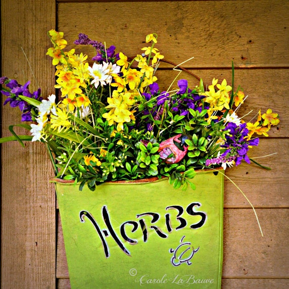 HERBS and FRESH FLOWERS ~ Herbal Arrangement ~ Flower Photography ~ Botanical Wall Art ~ Wild and Garden Flowers ~  Square Format