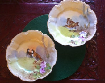 Hand Painted Pair of LDBC Limoges 9 Inch Decorated Plates with Wild Fowl
