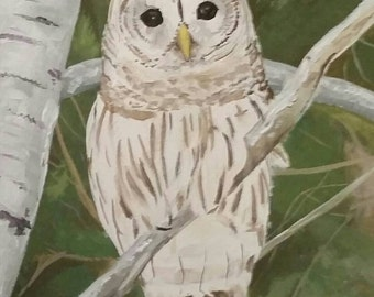 Original painting 5x7  - Barred Owl Watching