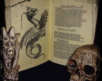 BESTIARIO Medievale - Medieval BESTIARY handmade book. Serpentum et Draconi - Ulysse Aldrovandi ediz. 1640 REPLICA