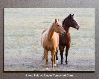2 Horses Cutting Board Cheese Serving Tray Trivet, Brown Tan Horse Race Pony Equestrian Farm Animal Pet Wildlife Green Field Wildlife