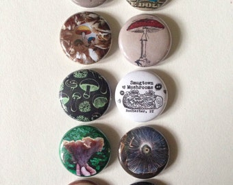 Smugtown Mushrooms Pin set, Half Inch Mushroom buttons, Wild Mushroom Buttons, Fungi Mushrooms Mycology Buttons