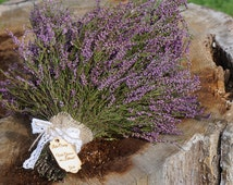 Heather bouquet * Dry Heathers bouquet * autumn decor *wild heather bouquet *dried flowers bunch * Baltic wood plant * purple color bouquet