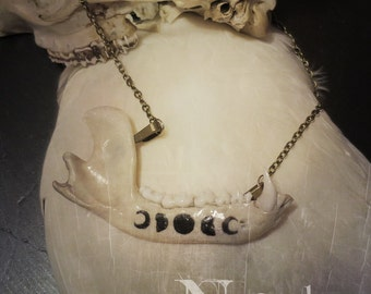 Witchy Raccoon Jaw Necklace, Bone Jewelry, Bone Necklace, Moon Phases, Oddities, Oddities Necklace, Witchy Necklace, Vulture Culture