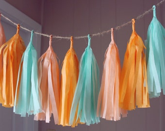 Peach Mint Apricot Tissue Paper Tassel Garland, Spring Color Tassel Garland, Cute Nursery Tassel Garland