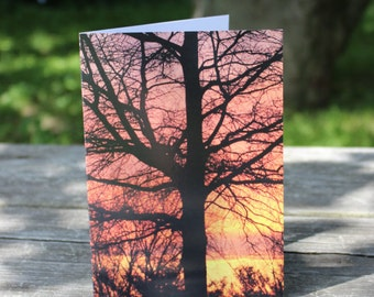 CARD 14 Send a Card to Show You Care. Peak Inside!  FREE U.S. Shipping.