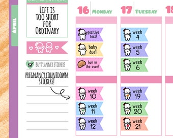 Munchkins - Pregnancy Tracker Weekly Countdown Flags with Fruits Planner Stickers (M76)