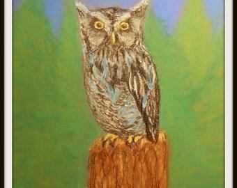 Eastern Screech Owl - Original Pastel Painting