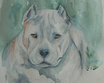 Pit Bull watercolour painting