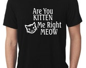 Are You Kitten Me Right Meow, Cat Lady, Love Cats, Funny Shirts, Make everyone laugh