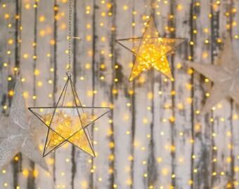 Glass star Terrarium, Terrarium, Geometric Glass , Stained glass, Planter