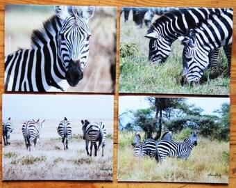 Zebra, Photo, Photography, zebra photo,  Blank note card, Wildlife, Safari, Greeting Card, Note Card
