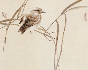 Chinese traditional art bird on the reed