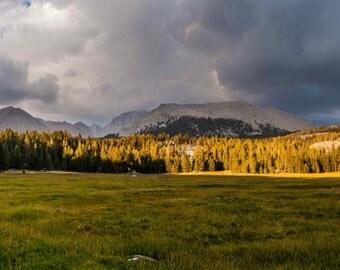 Crabtree Meadow of the Sierra Print