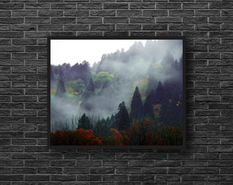 Misty Forest Photo - Foggy Forest - Forest Landscape Photo - Green and Red - Forest Photo Print - Forest Wall Art - Forest Wall Decor