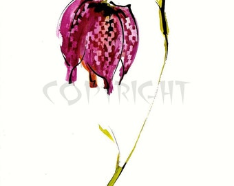 Snakeshead Fritillary Greeting Card