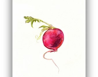 Radish watercolor painting, radish art, original radish watercolor, red, easter egg radish, kitchen decor, vegetable art