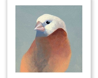 5 X 5 Art Print - Finch Number 27