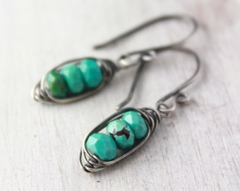 Turquoise Pod Oxidized Silver Earrings