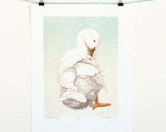 Duck Bird Art Print - Original handmade - Bird Art - Free Shipping