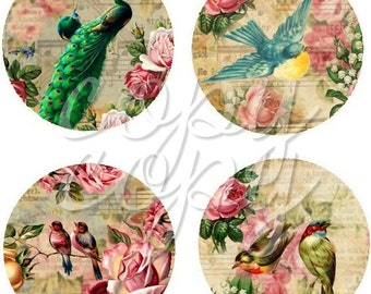 Birds and Roses - 1 inch circles  -  Printable Digital Collage Sheet - Digital Download