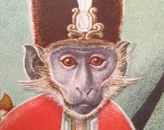 MONKEY Illustrations from 1940's Children's Book Pictures by Dorothy Lathrop