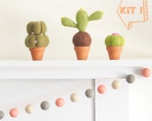 Needle Felting DIY Kit, Felt Cacti Succulent Kit, Handmade, New Hobby Craft, Cactus, Cute Plant, Christmas Gift