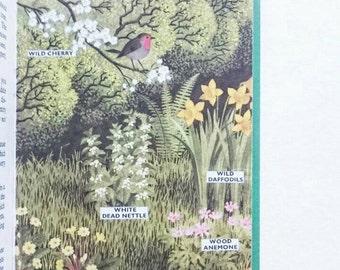 Vintage Ladybird Book Plants and How They Grow 1970 Matt Hardback Cover Series 651
