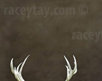 Rustic Wall Art Deer Antler Decor Brown Nature Photography Cabin Decor for Fathers Day