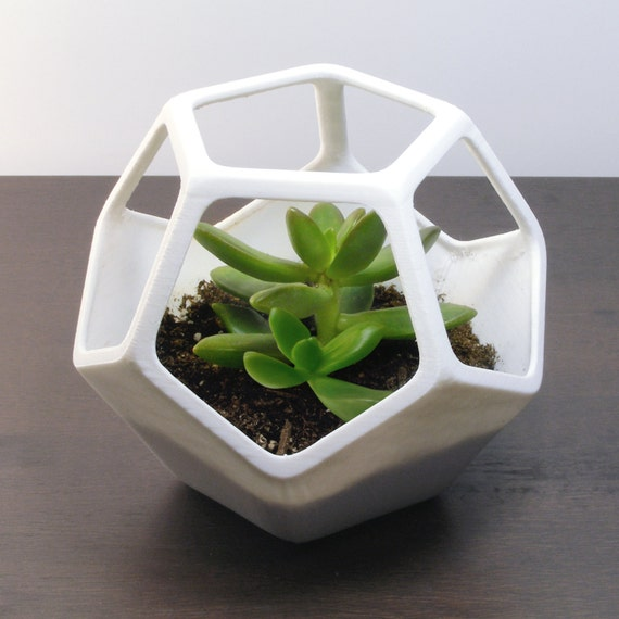 Dodecahedron Planter 3D Terrarium Printed Home By MeshCloud