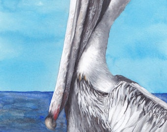 Limited Edition Print of Pelican (3 of 3) Watercolor Painting