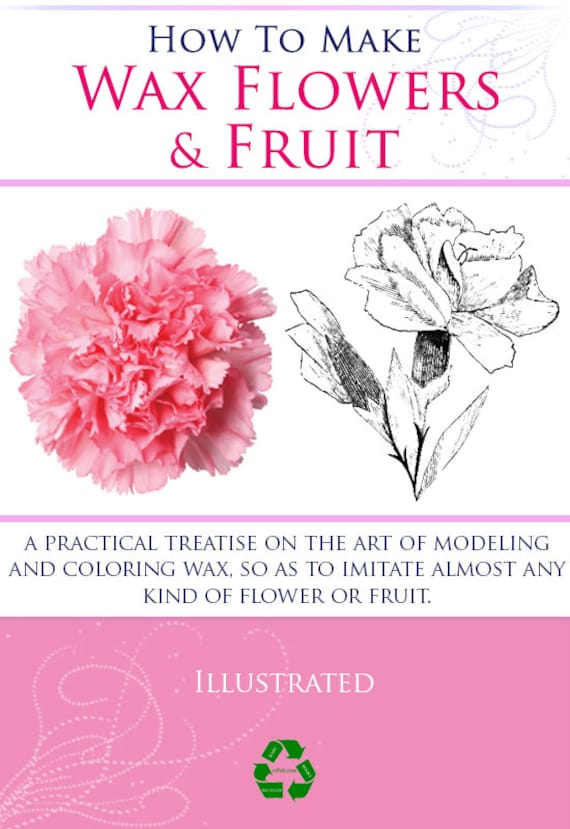 How to make wax flowers and fruit rare victorian manual Teach me how to draw a flower