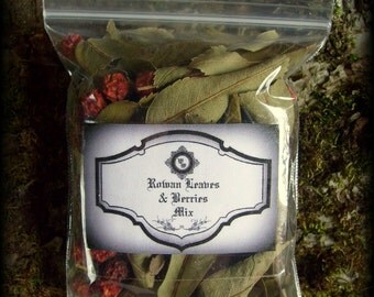 Rowan Leaves & Berries MIx: Witchcraft, Sorcery, Occult, Magic
