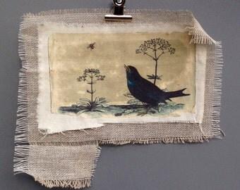 Blackbird and bee vintage print - rustic landscape - british birds